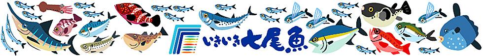 いきいき七尾魚