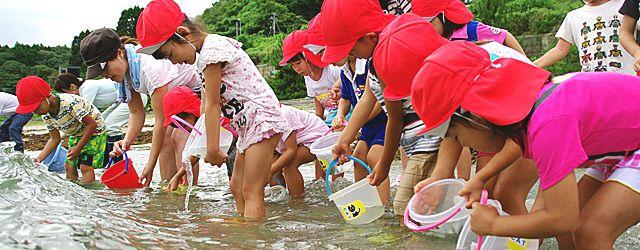 子供たちによる稚魚の放流